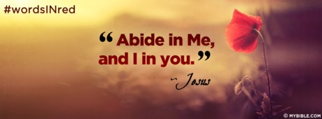 Abide In Me And I In You