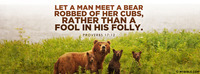 Let a man meet a bear robbed of her cubs,...