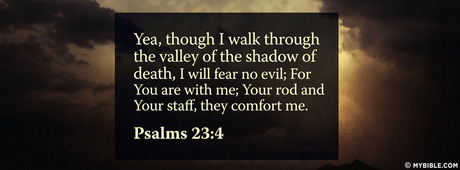 psalms 23 4 nkjv though i walk through the valley of the