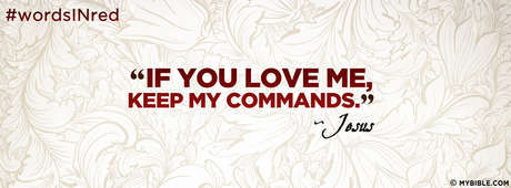 If You Love Me, Keep My Commands.