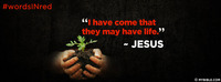 """""""I have come that they may have life."""" ~ Jesus"""