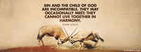 Sin And The Child Of God Are Incompatible